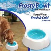 охлаждающая миска для собак