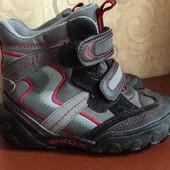 Демисезонные термо ботинки geox. 25 р.