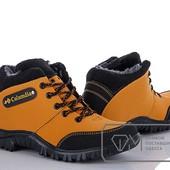 Модель № : W8287 Ботинки мужские