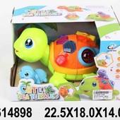 Музыкальная черепаха, свет, в коробке 22,5*18,0*14,0см