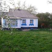 Здаю домик в селе