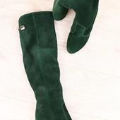 Демисезонные женские сапоги-ботфорты, замшевые, на байке, изумрудные, на высоком устойчивом каблуке