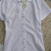 Peacocks блуза 16-размер