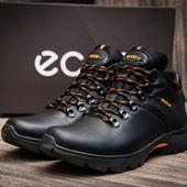 Ботинки зимние мужские Ecco р. 41-45, кожаные на меху, код kv-3816