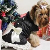 Куртка для собак с бусинками,рюшей и бантом Dogs Bomba K-24