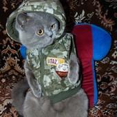 Зимняя фирменная курточка для вашего любимца бренд George (Джордж) 2-5 кг .
