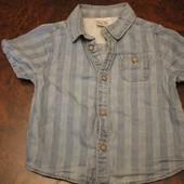 Рубашка Zaraboy 6 -12 мес