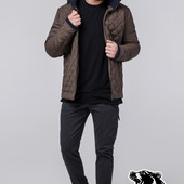 Демисезонная куртка мужская Braggart - 1652