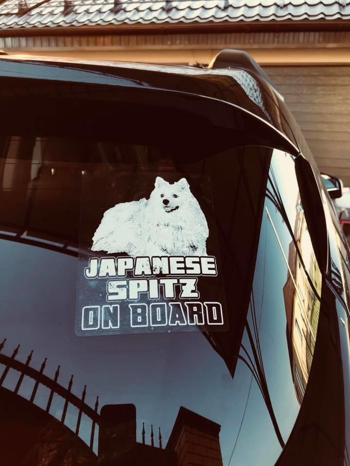 Автомобильные наклейки с разными породами собак фото №1