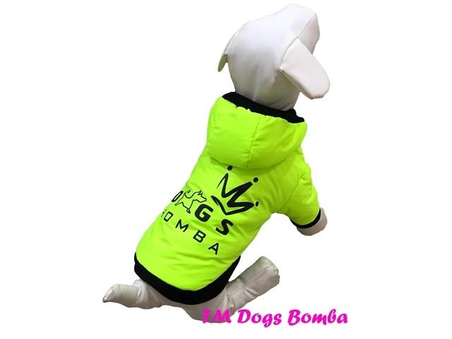 Куртка демисезонная для собачек k-56 фото №1