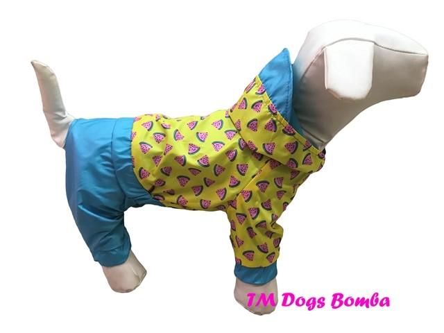 Дождевик для собак m-36 фото №1