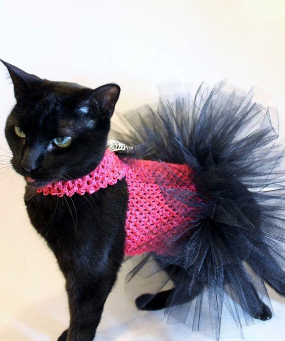 Платье для кошки фото №1