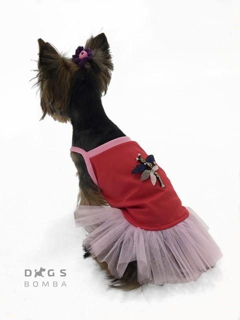 Платье для собачек стрекоза красно/розовое o-51 фото №1