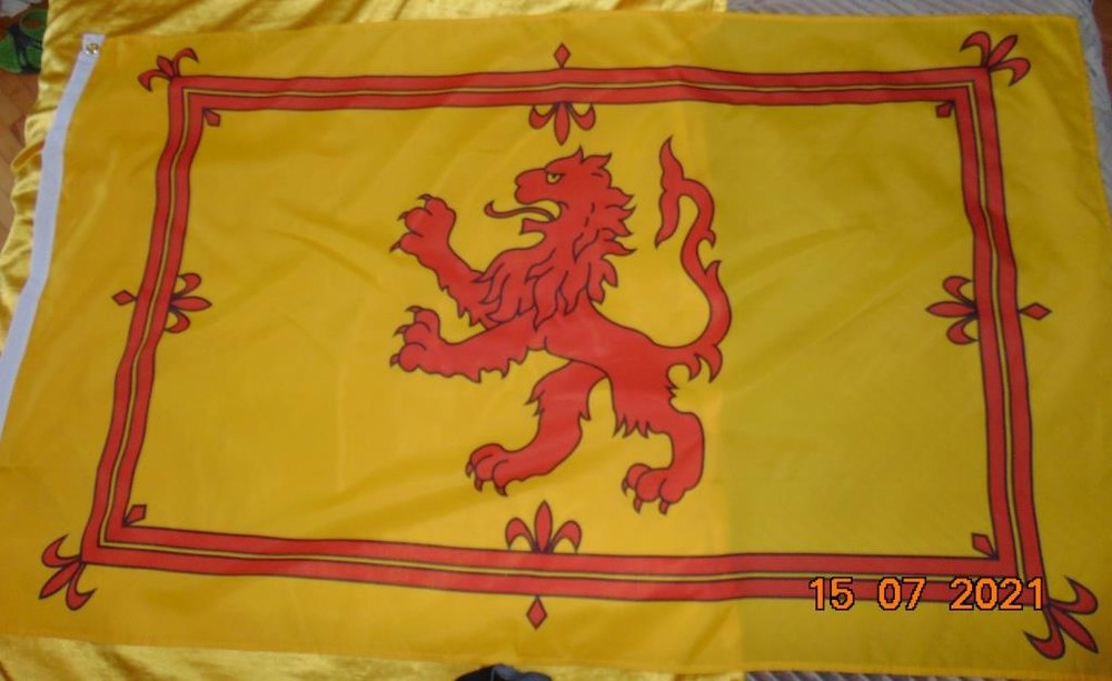 Фирменний спорт банер флаг лев . фото №1